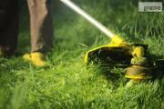 Zdjęcie do ogłoszenia: Koszenie trawy przycinanie tui gałęzi żywopłotów