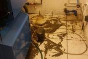 Zdjęcie do ogłoszenia: Sprzątanie po zalaniu,sprzątanie po wybiciu kanalizacji/szamba Toruń 24/7