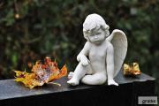 Zdjęcie do ogłoszenia: Sprzątanie grobów na cmentarzach w Lęborku