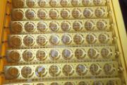 Zdjęcie do ogłoszenia: Inkubator do wylęgu jaj.