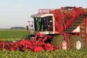 Zdjęcie do ogłoszenia: Kurs kombajny do buraków, ziemniaków, kapusty, pora, cebuli w ORENT