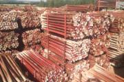 Zdjęcie do ogłoszenia: Stemple budowlane Sztyca Podpora Dźwigar h20 Legar Tregi