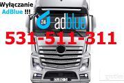 Zdjęcie do ogłoszenia: Usuwanie AdBlue Mercedes Actros MP4 BLUETEC 5 EURO 5 RZESZÓW