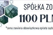 Zdjęcie do ogłoszenia: Spółka bez dodatkowych kosztów - tylko 1100 zł. Sprzedam spółkę, rejestracja!