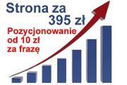 Zdjęcie do ogłoszenia: POZYCJONOWANIE stron Białystok tworzenie stron WWW strony internetowe
