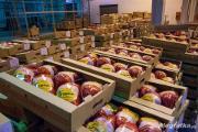 Zdjęcie do ogłoszenia: Ukraina.Chlodnia zakupie filety z kurczaka,mieso wieprzowe