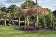 Zdjęcie do ogłoszenia: Parasol tropikalny parasol tiki parasol Hawajski Ekskluzywny i Unikatowy HIT