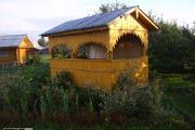 Zdjęcie do ogłoszenia: Ukraina.Gospodarstwo lesne,drzewka doniczkowe,choinki sosnowe 10zl.Du